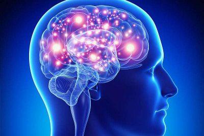 Il cervello infinito